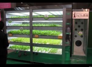 Le distributeur de salades